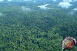 Kawasan Hutan Malinau Destenasi Wisatawan Mancanegara