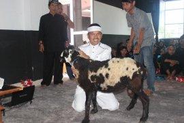Purwakarta Surplus Populasi Domba