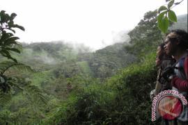 Petugas TNKS evakuasi tiga pendaki Gunung Kerinci