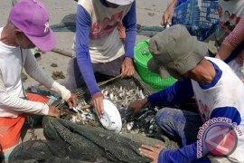 Nelayan di Mukomuko berlatih olah ikan laut