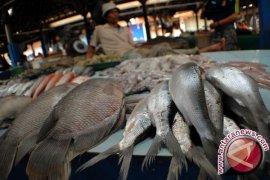 Konsumsi Ikan Masyarakat Bangka Tengah Tinggi