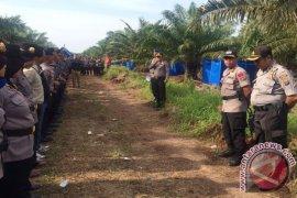 Eksekusi Lahan Perkebunan, 388 Personil TNI/Polri Disiagakan