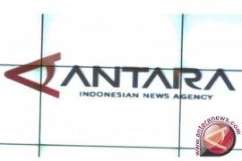 Cisfed : Demokrasi Asesoris Ancaman Bagi Indonesia