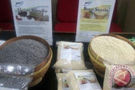 BPPT sosialisasikan olahan pangan lokal di Bengkulu