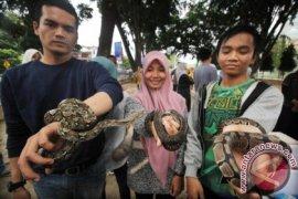 Petani pedalaman Aceh Utara dipatok ular berbisa