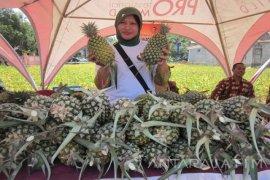 Pemkab Kediri Berencana Gelar Festival Nanas