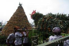 Warga Kediri Berebut Buah di Festival Nanas