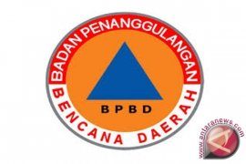 BPBD Singkil kesulitan air padamkan kebakaran lahan