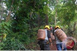 Antara  Hijaukan Objek Wisata Bukit Batas