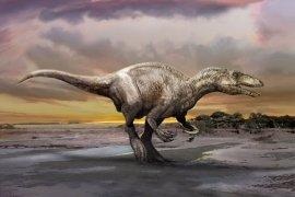 Fosil megaraptor penghuni terakhir bumi ditemukan di Argentina