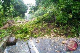 Jalan Cot Murong Sabang dibangun tanpa studi amdal