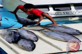 Australia Menangkap Nelayan Indonesia Di Laut Timor