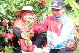 PKK encourages story telling village in Banjarmasin