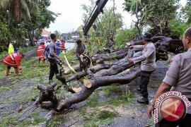 BMKG : sebagian wilayah hadapi curah hujan tinggi selama Desember