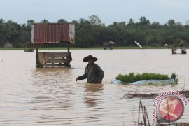 Pemkab Jembrana Imbau Anak Korban Banjir Sekolah