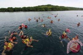 Berenang Di Pulau Menjangan