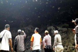 Goa Batman Dukung Destinasi Wisata Gunung Bromo
