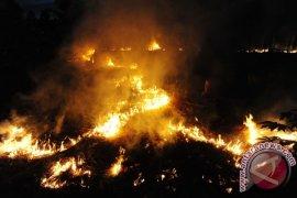 DMPA cegah petani lakukan tebang bakar