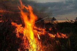 Manggala Agni Berusaha Padamkan Kebakaran Lahan Gambut