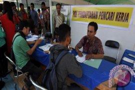 Job Fair Sulteng Dipadati Pencari Kerja Page 1 Small