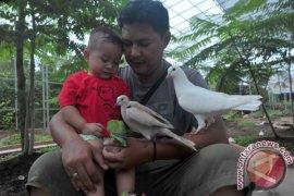 Cegah kerumunan, pengelola taman burung Jakabaring Palembang pilih tutup