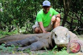 Layanan tiket berbasis aplikasi di Taman Nasional Komodo