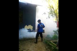 Dinkes Kota Singkawang catat 52 kasus DBD