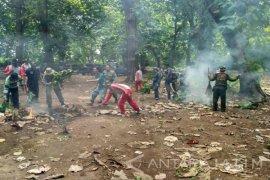 Perhutani Gelar Simulasi Penanggulangan Kebakaran Hutan di Situbondo