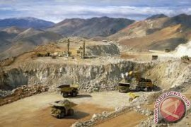 Polisi Temukan 25 Mayat Penambang Emas Liar di Afrika Selatan