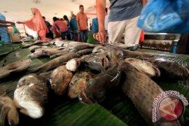 Pasokan ikan ke pasar Meulaboh terganggu cuaca ekstrem