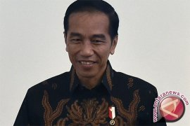 Presiden Jokowi Mulai Peremajaan Kebun Sawit di Sumut