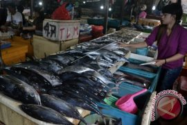 Perikanan Naikkan NTP Bali Hingga 0,27 Persen