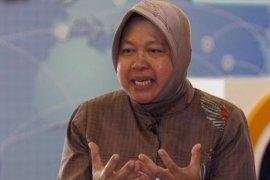 Risma nyatakan siap jadi Timses Jokowi-Ma'aruf