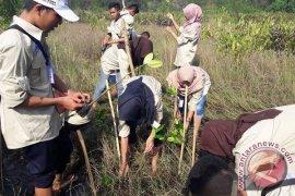 SMN Jateng Tanam Mangrove Di Pantai Bengkulu