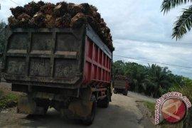 Dua pabrik di Mukomuko beli sawit dengan harga tinggi