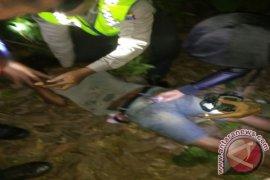 Polisi Gagalkan Pencurian Getah Karet Milik PTPN