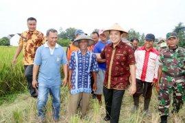 Lampung Menyalurkan Kredit Usaha Rakyat Mikro Kedelai