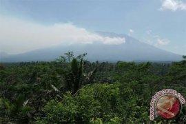 BPBD Bali: Lereng Gunung Agung Terbakar