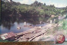 Pesona Aliran Sungai Barito Tak Sejaya Dulu Lagi