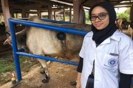 Sari, Calon Doktor Muda Dari IPB Dengan Terobosan Baru Dalam Pakan Ternak