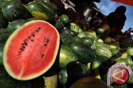 Enam buah rendah karbohidrat untuk menurunkan berat badan