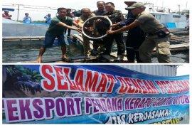 Wabup Situbondo Resmikan Ekspor Perdana Ikan Kerapu (Video)