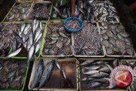Perum Perindo Kampanyekan Gemar Makan Ikan