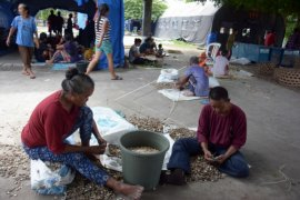 Pengungsi Jadi Buruh Kupas Kacang