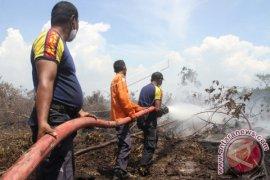 BPBA: Karhutla di Aceh Selatan terkendali