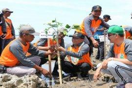 Forpimda Sumenep dan Relawan Tanam Seribu Mangrove (Video)
