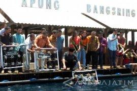 Di Pantai Bangsring, BI Kembangkan Konservasi Lingkungan Berbasis Ekonomi Berkelanjutan (Video)