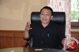 Gubernur Bali imbau masyarakat batasi gunakan kembang api