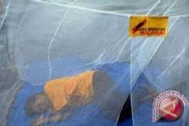 Penajam Paser Utara Masih Endemis Malaria