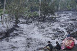 PVMBG: Pertumbuhan Lava Gunung Agung Alami Perlambatan